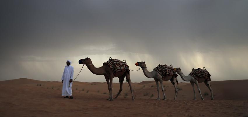 Desert-Safari-Classypath